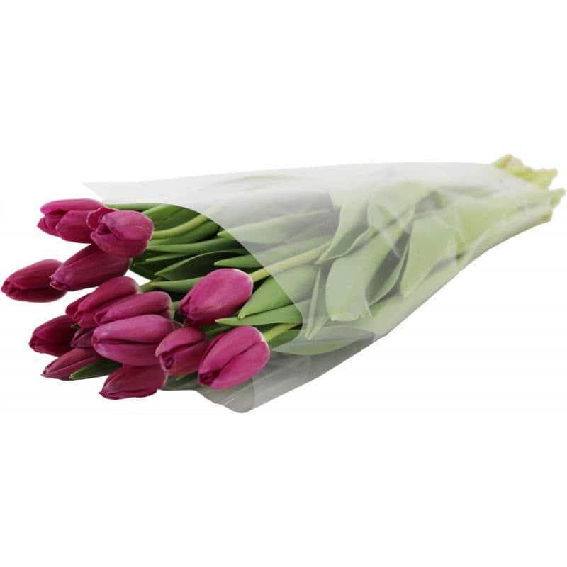 Заказать букет, букет тюльпанов 15 штук купить